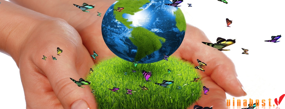 vinahost-Save-the-world-with-green-server-hosting-Asia-3